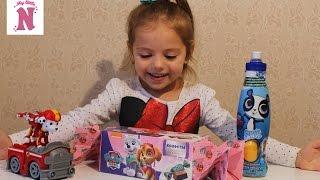 Игрушки ЩЕНЯЧИЙ ПАТРУЛЬ Большая конфета с Сюрпризом PAW Patrol Toys Pet Thop с сюрпризом