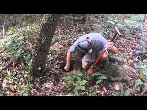 Georgia Relic Hunt civil war metal detecting