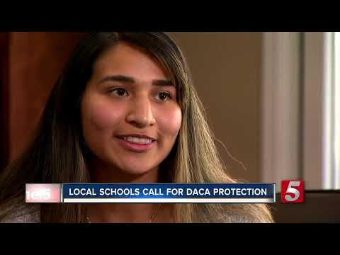 Local universities join list of schools urging Congress to protect Dreamers
