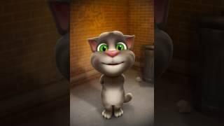 Catoo jii so cute