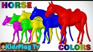 learn colors with horse animal colours for kids and Toddlers - kids play tv