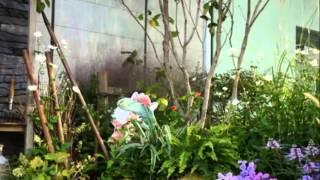 銀座ソニービル、イベントコーナー。 ピーターの庭が絵本から飛び出した。