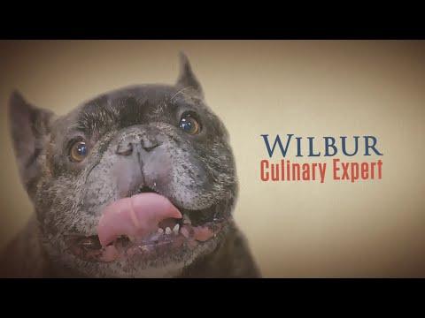 Wilbur, Culinary Expert