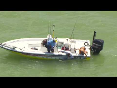 Episode 5 Outdoor Channel Mad Fin Shark Series 2012