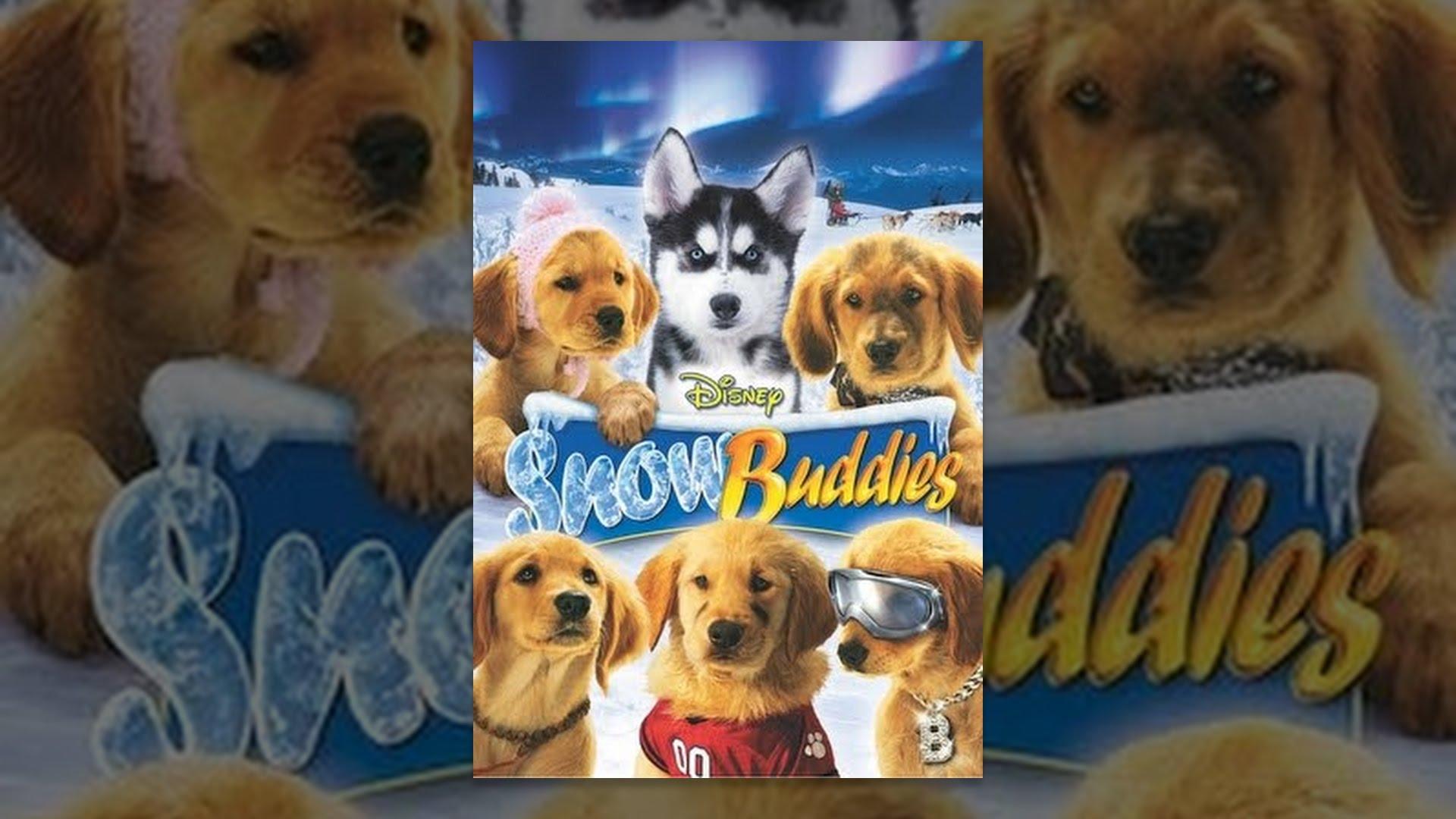 snow buddies   youtube