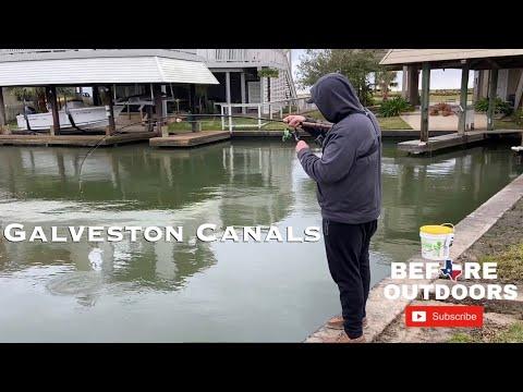 Galveston Fishing (Canals)