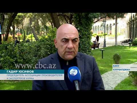 Поддержка государства ощущается на всех этапах деятельности азербайджанских предпринимателей