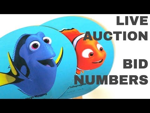 bid-paddles-ideas:-live-charity-auction-bidding