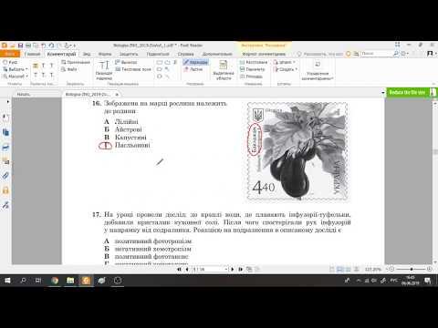 Розв'язання тестів ЗНО-2019 біологія (розбір, відповіді)