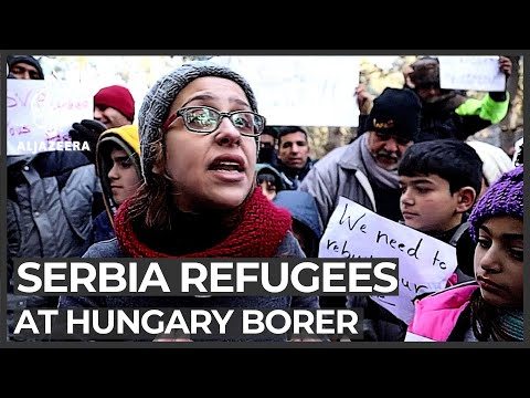 Refugees, migrants in Serbia attempt to cross Hungary's border
