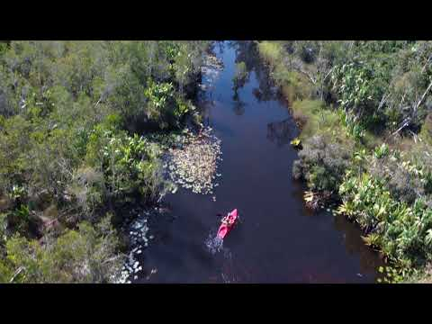 Madagascar Rainforest Kayaking  | By The River (Cinematic)