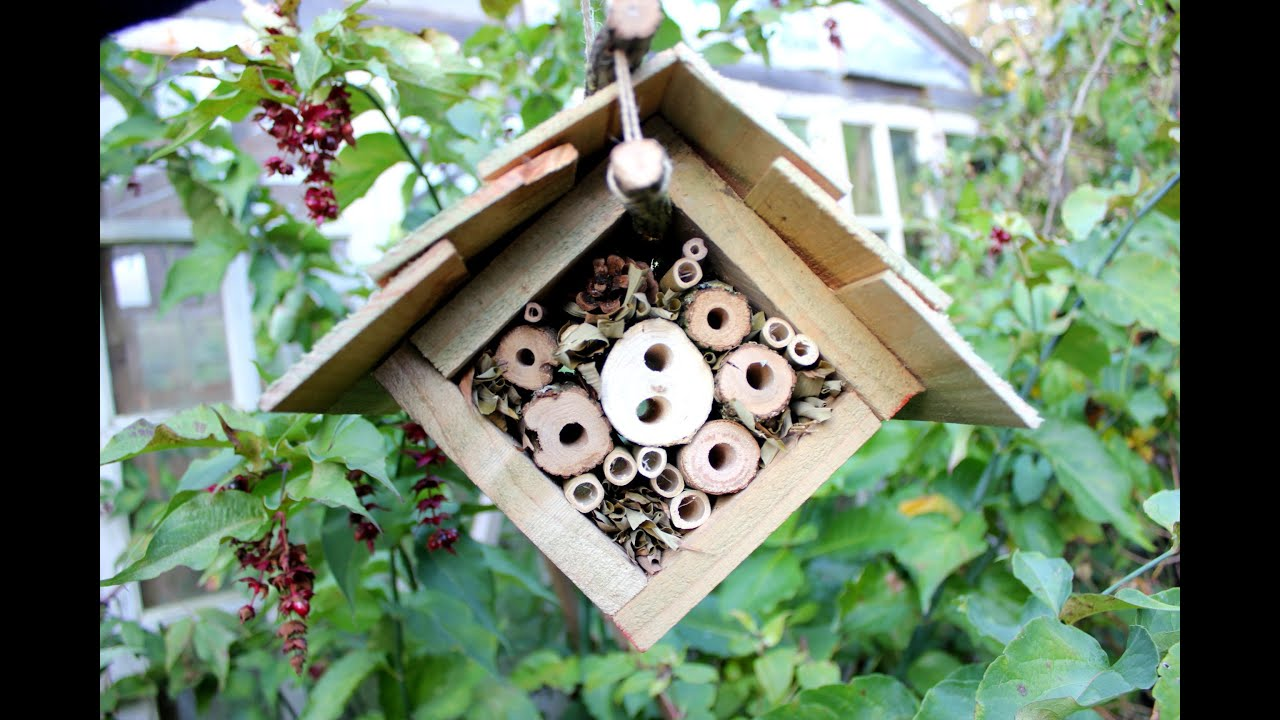 Home Made Insect Hotel Part 2 Suspended Eco Lodge For