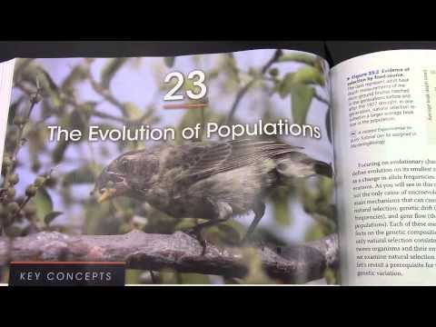 Lab: Evolution & Population Genetics (HWE)