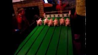Pig Racing with Piggy-Power.com