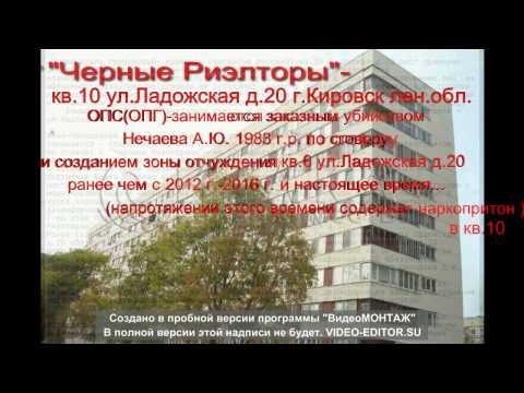Ленинградская область — Википедия