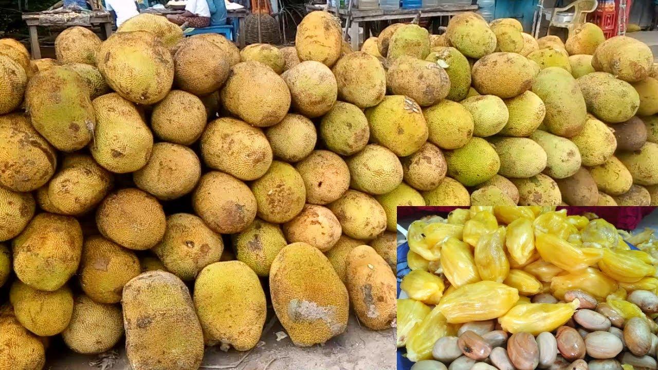 How To Open N Cook Jackfruit - Jackfruit Seeds Recipe ...