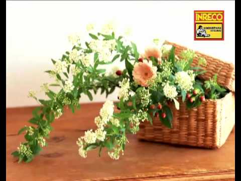 Naari Charitra Bejaay Jatil - Ogo Badhu Sundari  - Kishore Kumar