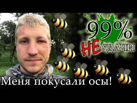 Игра «Дашу покусали пчелы»