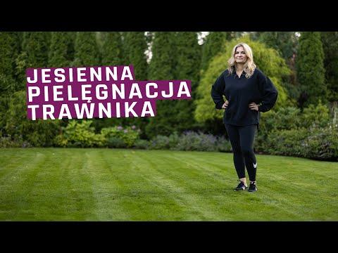 Pielęgnacja Trawnika Jesienią. Odpowiadam Na Wasze Pytania!
