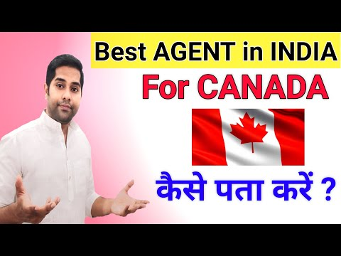 Best Agent For Canada In India | Best Consultant Office Or  Immigration Lawyer In India For Canada