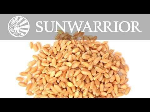 Barley: A True Superfood |  Dr. Weston