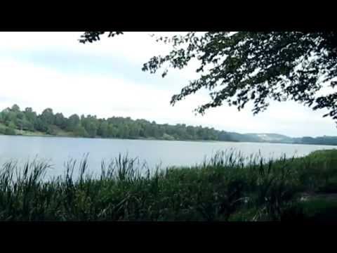 Jezioro Wysockie W Gdańsku Osowie