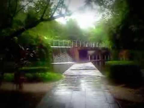 Ecological Park - Shenzhen China