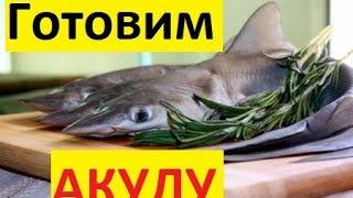 Как приготовить акулу