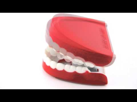 Teeth Animation