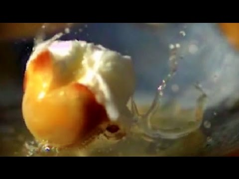 Popping Popcorn in Slow Motion (Amazing Close Up!!) HD | Slow Mo Lab
