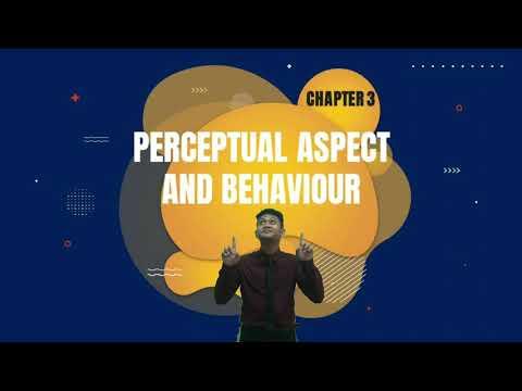 Perceptual Aspect And Behaviour : Chapter 3