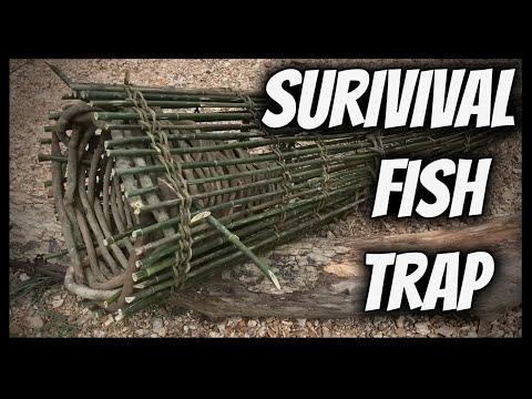 The Best Survival Fish Trap