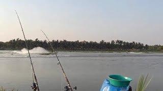 câu cá ,hậu quả của việc đi câu gần.