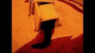 Кошка Маруська - Империя атакует