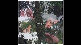 Blend - Bosques [TRAILER]