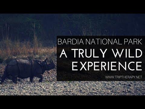 A walk safari in Bardia national park - Nepal - HD