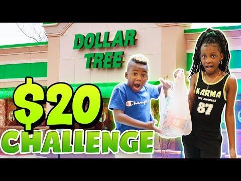 20$ Dollar Store Challenge