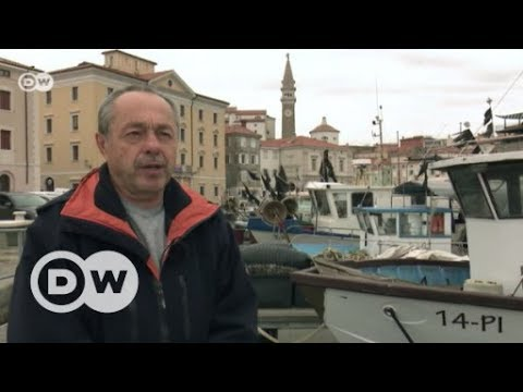 Who owns this sea, Slovenia or Croatia? | DW English