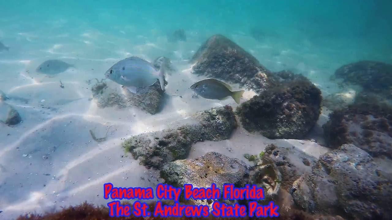 Snorkeling Panama City Beach Florida The St Andrews Jetties Gopro Hero4 Black