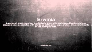Medical vocabulary: What does Erwinia mean
