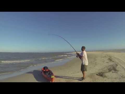 Shark Fishing on Cape San Blas, Gulf County Florida
