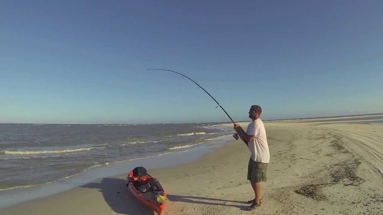 Shark fishing on cape san blas gulf county florida youtube for Cape san blas fishing report