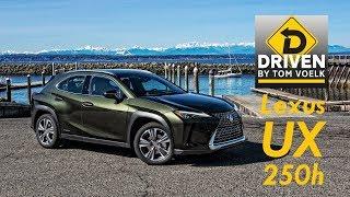Driven- 2019 Lexus UX 250h Luxury