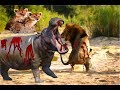 LIVE:  Wild Discovery Animals-Animals Documentary- Most Amazing Moments Of Wild Animal Fights 2018