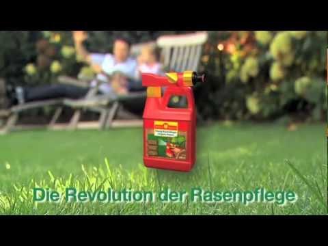 Asche Als Rasendünger : fl ssigd nger test rasend nger test ~ Watch28wear.com Haus und Dekorationen