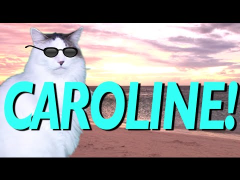 Happy Birthday Caroline Epic Cat Happy Birthday Song Youtube