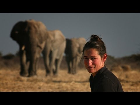 Caitlin O'Connell - The Secret Lives of Elephants