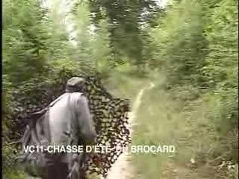 La chasse d'été du brocard (existe en DVD & VOD)