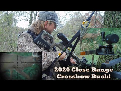 Close Range Crossbow Buck! Whitetail Deer Hunting Indiana in JX3 Hybrid Saddle w Tactacam FTS View!