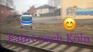 Fahrt nach KÖLN zu MORITZ DAILYVLOG 2  HeyHorse